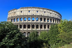 colosseum italy rome Arkivfoton