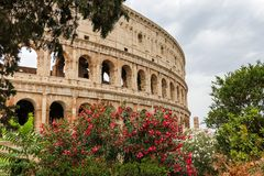 The Flavian amphitheatre 7 - the Colosseum, Rome, Italy royalty free stock photography