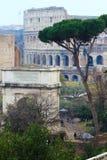 Colosseum morgonsikt, Rome Royaltyfri Bild
