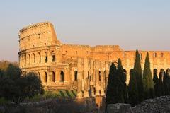 Colosseum ou coliseu famoso mim Imagem de Stock