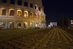 Colosseum på natten Arkivbild