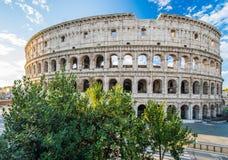 Colosseum przy wschodem słońca, Rzym, Włochy Obrazy Stock