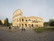 Colosseum roma Royalty Free Stock Images