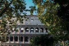 Colosseum, Roma, Italia imagen de archivo