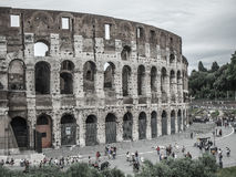 Colosseum Roma Italy Fotos de Stock Royalty Free