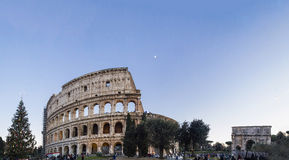 Colosseum roma italy arena arch costantino christmas tree Royalty Free Stock Image