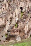 Colosseum romano Imágenes de archivo libres de regalías