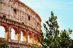 Colosseum in Rome Stock Afbeeldingen
