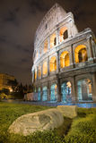 Colosseum Rome. Colosseum arena, night view, vertical frame. Rome, Italy royalty free stock images