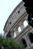 The Colosseum, Rome Royalty Free Stock Photo