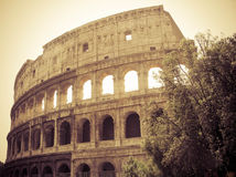 Rome (Roma) - Colosseum Stock Photos