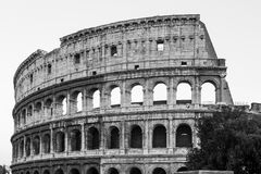 Colosseum in Rome (Anfiteatro Flavio) Royalty Free Stock Photography