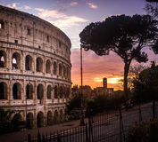 Colosseum of Rome Royalty Free Stock Photos