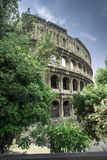 The Colosseum in Rome Royalty Free Stock Photography