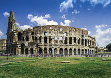 The Colosseum in Rome. Green grass Stock Photos