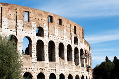 The Colosseum in Rome Italy Stock Image
