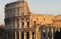 Colosseum, Rome, Italy Royalty Free Stock Images
