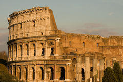 Rome Colloseum. The Colosseum in Rome, Italy royalty free stock images