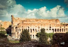 Colosseum in the Rome. Italy royalty free stock photo