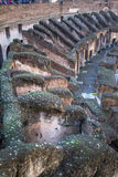 The Colosseum, Rome, Italy Royalty Free Stock Images