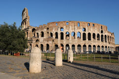 Colosseum Rome Italy. Blooms in front of the Colosseum in summer stock images