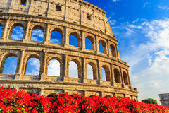 Colosseum in Rome, Italy. Detail of the Colosseum in Rome, Italy Stock Photos