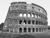 Colosseum in Rome. Royalty Free Stock Photo