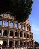 Colosseum - Rome, Italy. Summer view of the colosseum Stock Photo