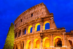 Colosseum, Rome Stock Images
