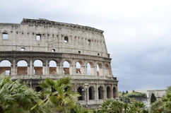 Colosseum in Rome Italy Royalty Free Stock Photography