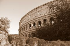 The Colosseum of Rome Stock Photography