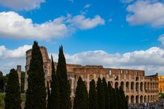 Colosseum of Rome with trees stock photos