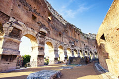 Colosseum, Rome. View to great Colosseum, Rome, Italy royalty free stock photos