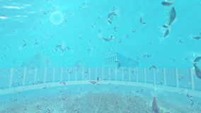 Colosseum and Ruins landmarks underwater stock footage