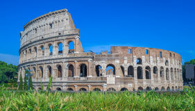 Colosseum ruins Stock Image