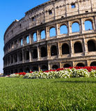 Colosseum. Side View of Colosseum in Rome Stock Photography