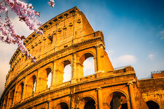 Colosseum am Sonnenuntergang stockbilder