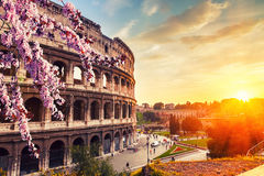 Colosseum at spring Royalty Free Stock Photos
