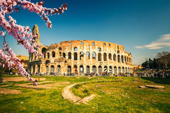 Colosseum at spring. In Rome, Italy Royalty Free Stock Photo