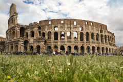 Colosseum in spring Royalty Free Stock Photo