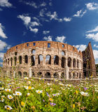 Colosseum during spring time, Rome, Italy Stock Photo