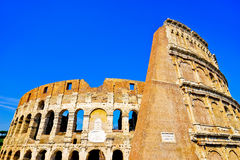 Colosseum in a sunny day in Rome Stock Images