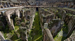 In the Colosseum on a Sunny Day Royalty Free Stock Photography
