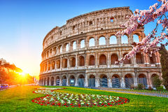 Colosseum at sunrise Royalty Free Stock Photos