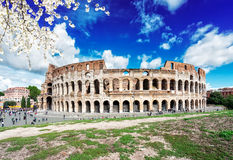 Colosseum at sunset in Rome, Italy. Ruins of antique Colosseum at spring day in Rome Italy Stock Photo