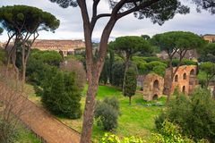 Colosseum view from Palatino hill in Rome, Italy. Roman coliseum ancient landmark travel history architecture italian monument day amphitheater skyline building stock photography