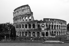 Colosseum Royalty Free Stock Photo