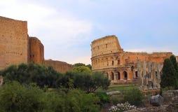 Colosseum w Rzym Obraz Stock