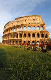 Colosseumen i Rome Royaltyfri Foto