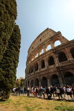 Colosseumen på en ljus solig dag Fotografering för Bildbyråer